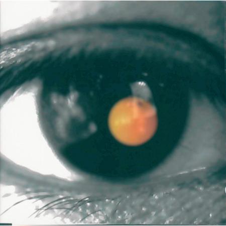 黑色柳丁 專輯封面