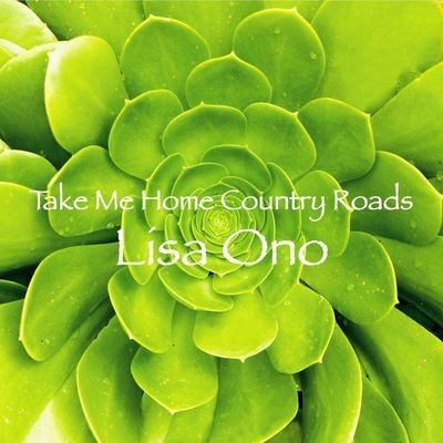 Take Me Home Country Roads 鄉間小路 帶我回家 專輯封面