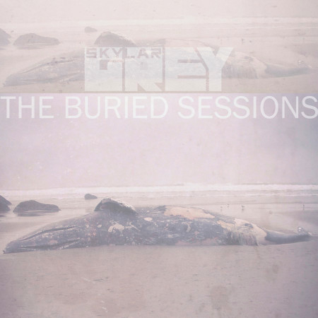 The Buried Sessions of Skylar Grey 專輯封面
