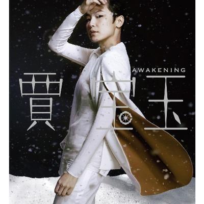 Awakening 賈寶玉 紀念國語大碟 專輯封面