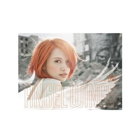 天使之翼 專輯封面