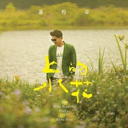 上水的花 專輯封面