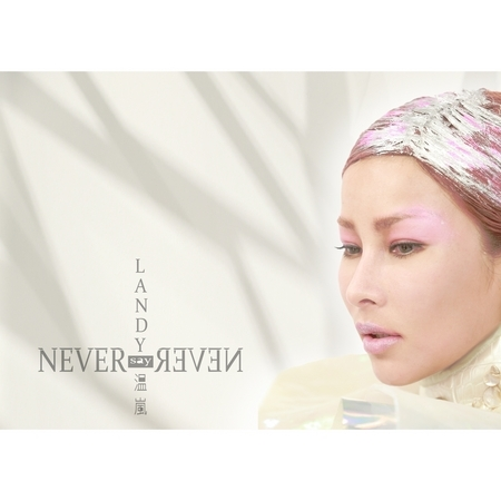 Never Say Never 專輯封面