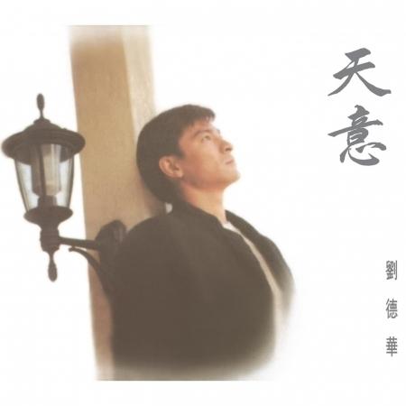 天意 專輯封面