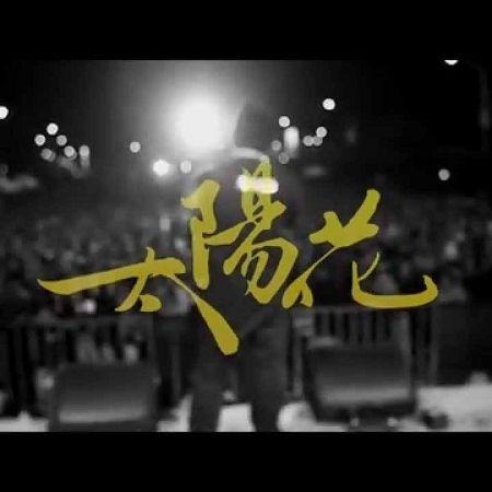 太陽花 專輯封面