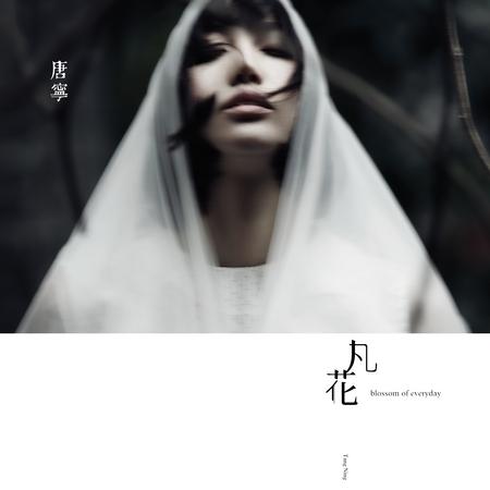 凡花 專輯封面