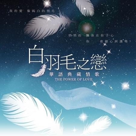 白羽毛之戀 專輯封面