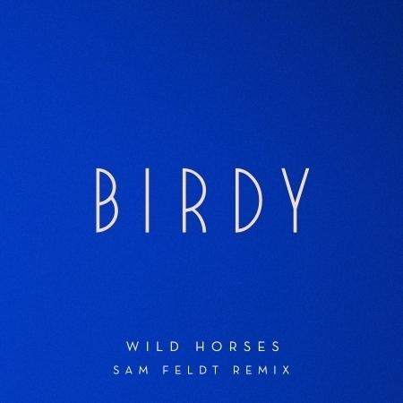 Wild Horses (Sam Feldt Remix) 專輯封面