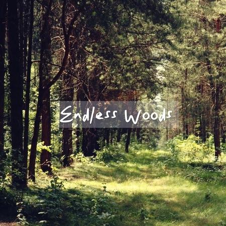 無盡的山林:Endless Woods 專輯封面