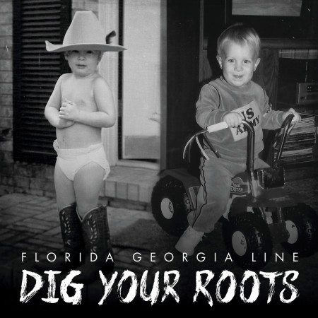 Dig Your Roots 專輯封面