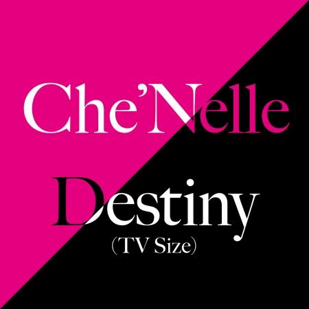 Destiny (TV Size) 專輯封面