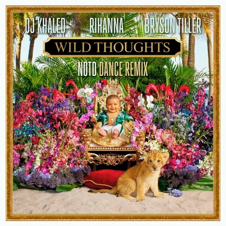 Wild Thoughts (feat. Rihanna & Bryson Tiller) [NOTD Dance Remix] 專輯封面