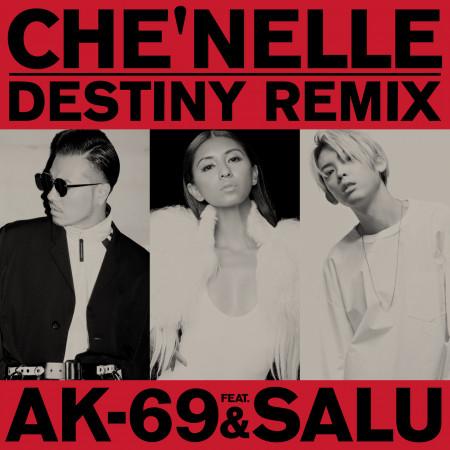 Destiny (feat. AK-69 & Salu) [Remix] 專輯封面