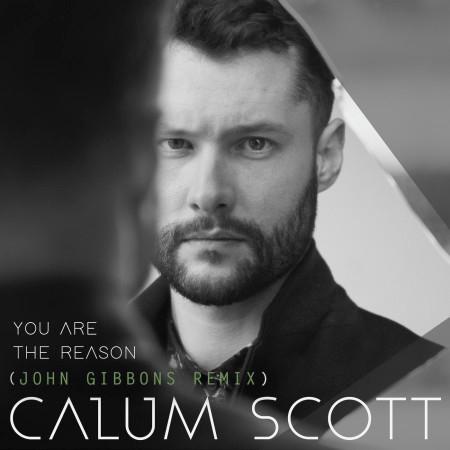 You Are The Reason (John Gibbons Remix) 專輯封面