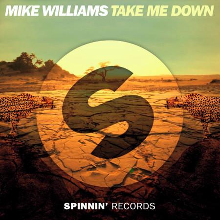 Take Me Down 專輯封面