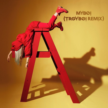 MyBoi (TroyBoi Remix) 專輯封面