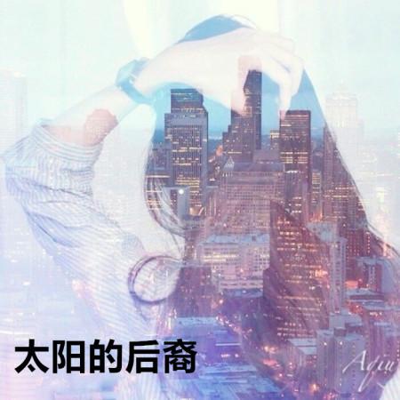 太陽的後裔 專輯封面