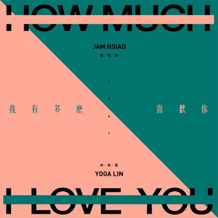 我有多麼喜歡你 (feat.林宥嘉) 專輯封面