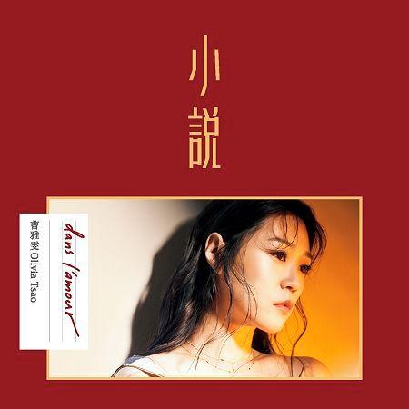 小說 專輯封面