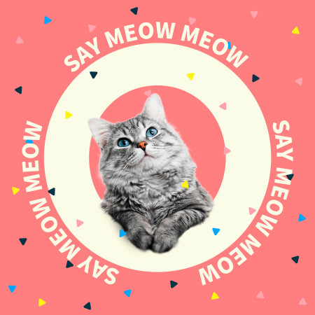 Say Meow Meow 專輯封面