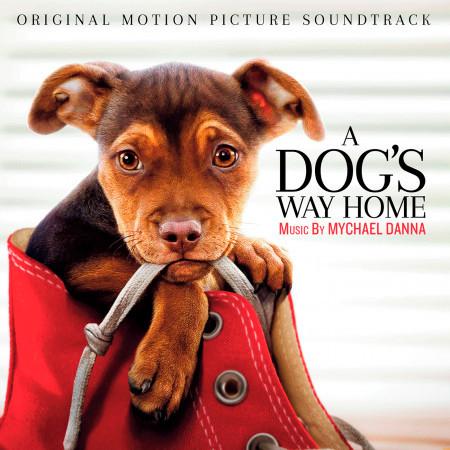 A Dog's Way Home (Original Motion Picture Soundtrack) 專輯封面
