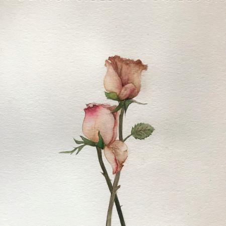 未果(張雨晴) 專輯封面