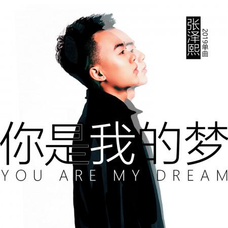 你是我的夢 專輯封面