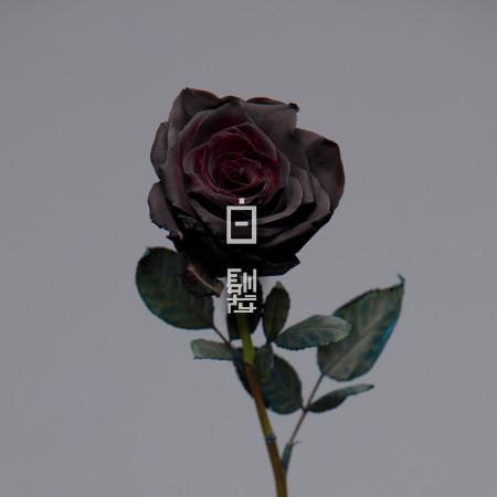 白髮 專輯封面