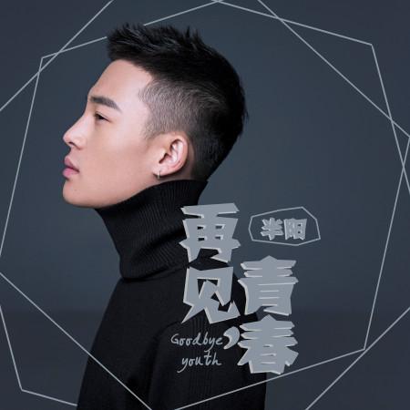 再見,青春 專輯封面