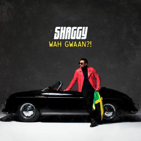 Wah Gwaan?! 專輯封面