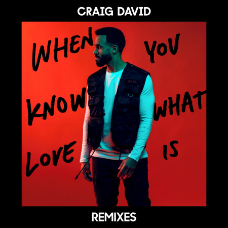 When You Know What Love Is (Remixes) 專輯封面