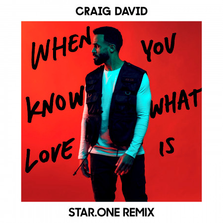 When You Know What Love Is (Star.One Remix) 專輯封面