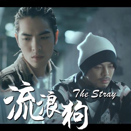 流浪狗 The Stray (Single) 專輯封面