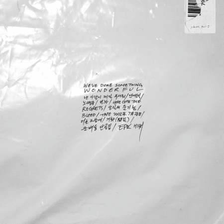 WE'VE DONE SOMETHING WONDERFUL 專輯封面