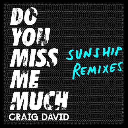 Do You Miss Me Much (Sunship Remixes) 專輯封面