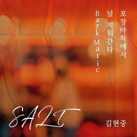 SALT 專輯封面