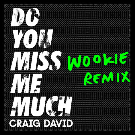Do You Miss Me Much (Wookie Remix) 專輯封面
