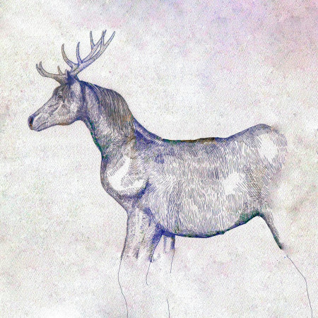 馬與鹿 專輯封面