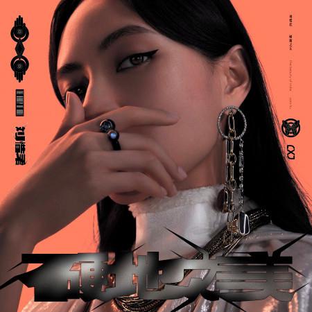 硬地之美 專輯封面