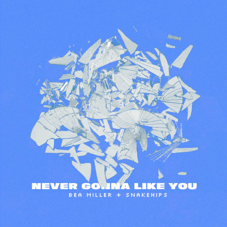 NEVER GONNA LIKE YOU 專輯封面