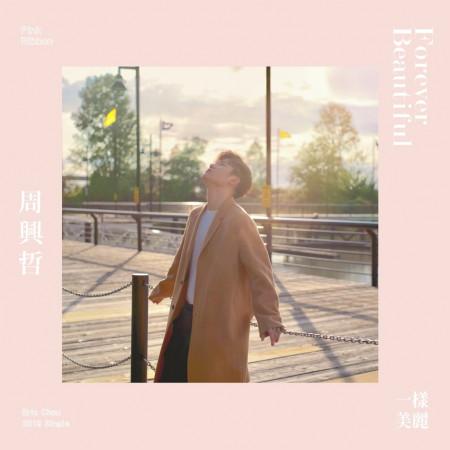 一樣美麗 (粉紅絲帶宣導活動主題曲) 專輯封面