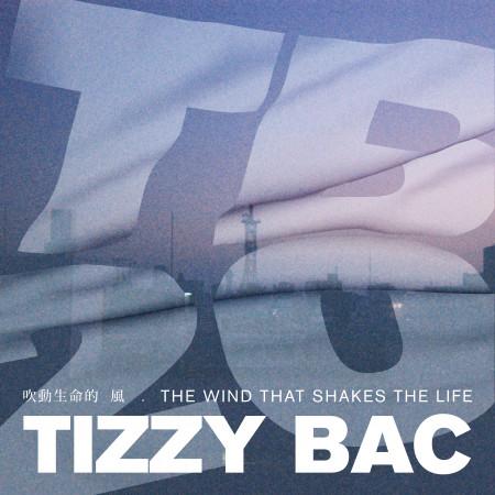 吹動生命的風 專輯封面