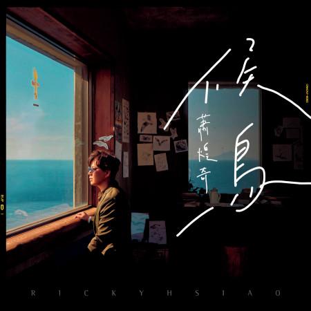 候鳥 專輯封面