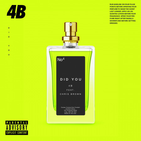 Did You (feat. Chris Brown) 專輯封面