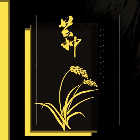 芒种 專輯封面