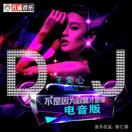 不是因為寂寞才想你 (DJ電音版Remix) 專輯封面
