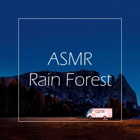 聽見大自然雨林 / ASMR大腦按摩 ( ASMR Rain Forest ) 專輯封面