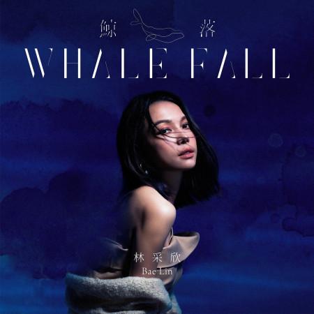 鯨落 專輯封面