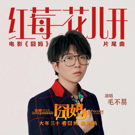 紅莓花兒開 (電影《囧媽》片尾曲) 專輯封面