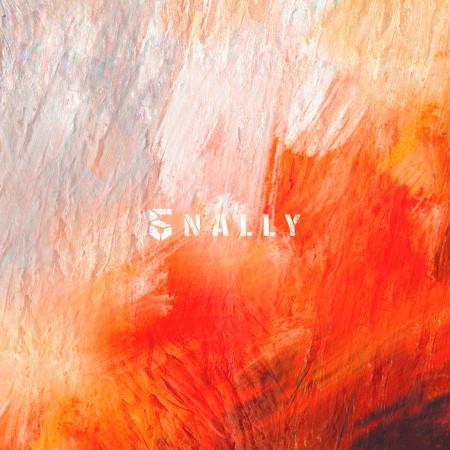 5NALLY 專輯封面